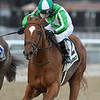 Mr. Buff wins the 2018 Alex M. Robb Stakes at Aqueduct<br /> Coglianese Photos/Chelsea Durand