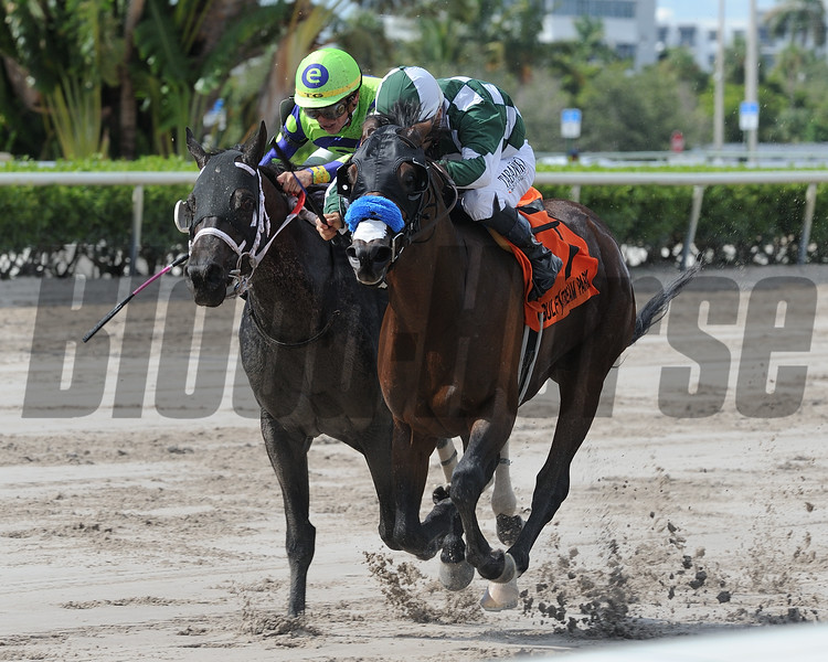 One of a Kind wins the 2018 The Vid Stakes<br /> Coglianese Photos/Kenny Martin
