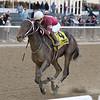 Bankit wins the 2018 Sleepy Hollow Stakes<br /> Coglianese Photos/Joe Labozzetta