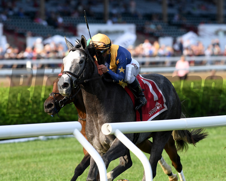 Dogtag wins the 2018 P. G. Johnson Stakes<br /> Coglianese Photos/Chelsea Durand