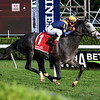 Dogtag wins the 2018 P. G. Johnson Stakes<br /> Coglianese Photos/Susie Raisher