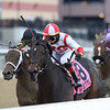 Patternrecognition wins the 2018 Cigar Mile (G1) at Aqueduct<br /> Coglianese Photos/Chelsea Durand