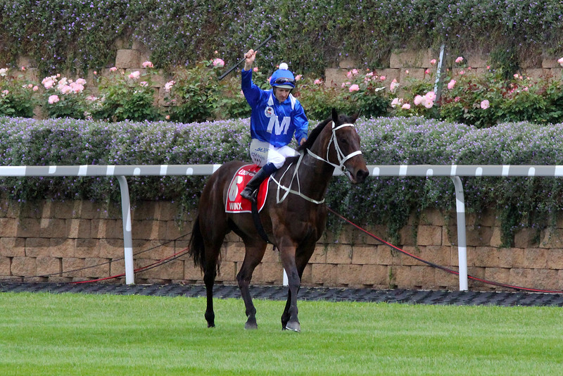 Winx wins her fourth Cox Plate at Moonee Valley on October 27, 2018