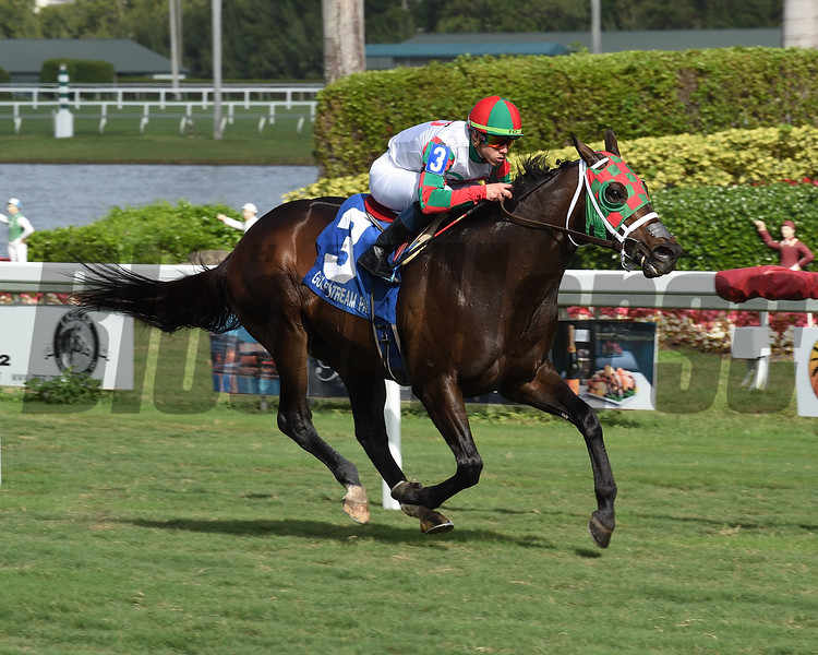 Vision Perfect wins the 2018 Janus Stakes at Gulfstream Park<br /> Coglianese Photos/Lauren King