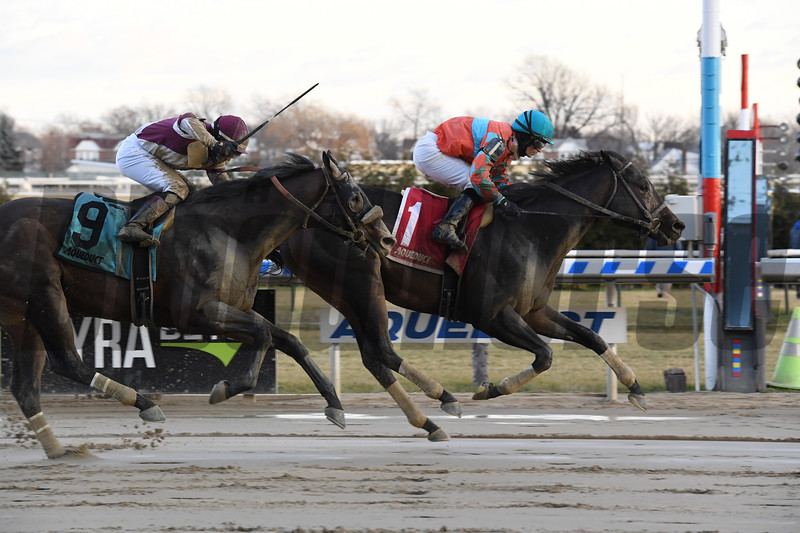 Name Changer wins the Queens County Stakes at Aqueduct Saturday, December 22, 2018. Photo: Coglianese Photos