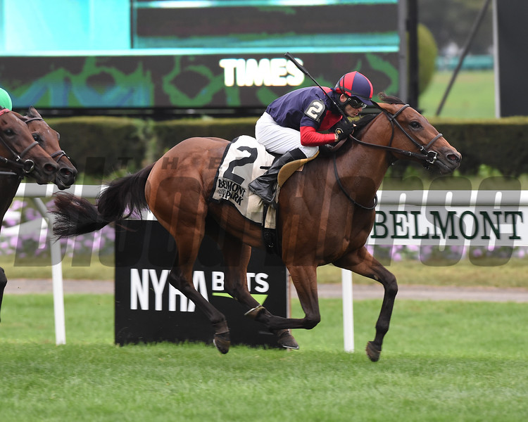 Lonely Road wins 2018 Matron Stakes at Belmont Park. Photo: Coglianese Photos