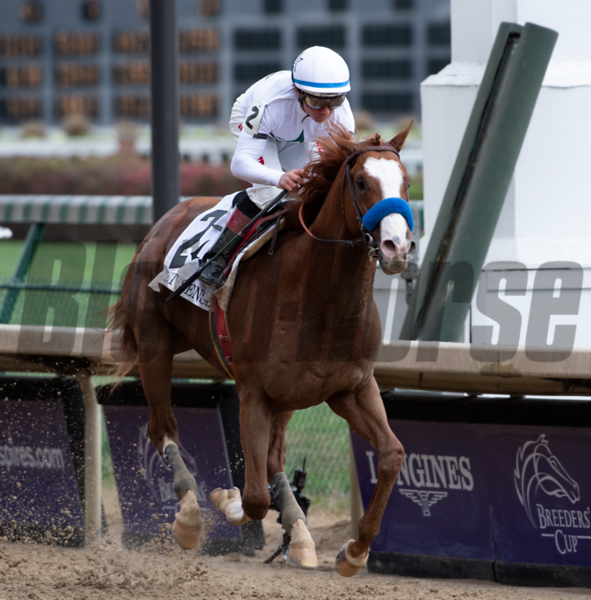 Improbable wins the 2018 Street Sense<br /> Skip Dickstein Photo