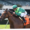 Fifty Five wins the 2018 Ticonderoga Stakes<br /> Coglianese Photos/Chelsea Durand
