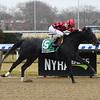 Forgotten Hero wins the 2018 New York Stallion Series Fifth Avenue Division at Aqueduct<br /> Coglianese Photos/Susie Raisher