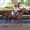 Jala Jala wins the 2018 Copa Confraternidad del Caribe at Gulfstream Park<br /> Coglianese Photos/Leslie Martin