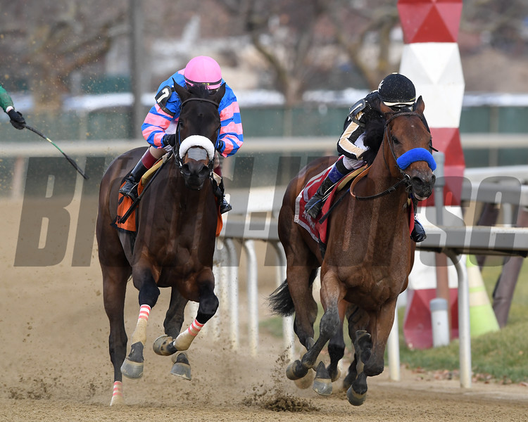 Marley's Freedom wins the 2018 Go for Wand (G3) at Aqueduct<br /> Coglianese Photos/Rob Mauhar