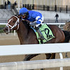 Exulting wins the 2018 Artie Schiller Stakes<br /> Coglianese Photos/Joe Labozzetta