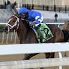 Exulting wins the 2018 Artie Schiller Stakes<br /> Coglianese Photos/Joe Labozzetta