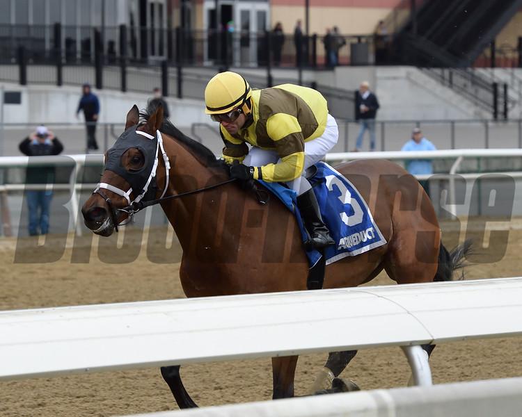 Plainsman wins the 2018 Discovery Stakes at Aqueduct<br /> Coglianese Photos/Joe Labozzetta