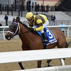 Plainsman wins the 2018 Discovery Stakes at Aqueduct<br /> Coglianese Photos/Joe Labozzetta
