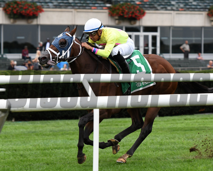 World of Trouble wins the 2018 Allied Forces Stakes<br /> Coglianese Photos/Annette Jasko