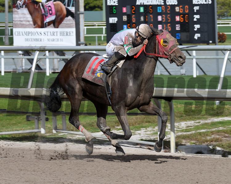 Salsa's Return wins the 2018 Claiming Crown Iron Horse at Gulfstream Park<br /> Coglianese Photos/Lauren King