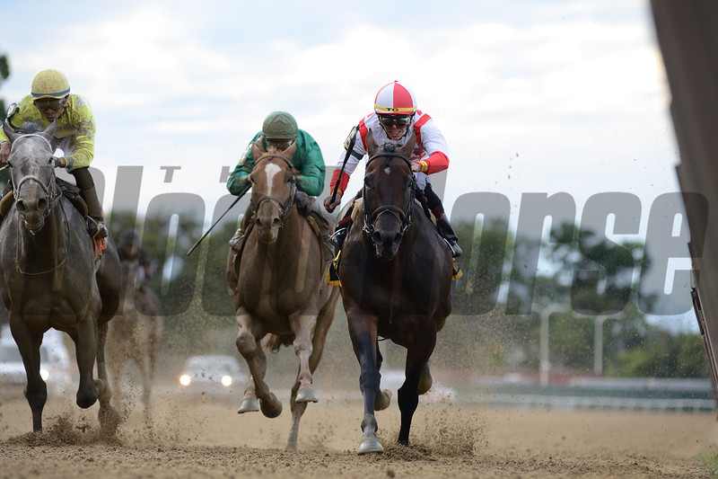 Patternrecognition wins the 2018 Kelso Handicap<br /> Coglianese Photos