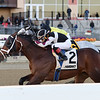 Recruiting Ready wins the Gravesend Stakes at Aqueduct Sunday, December 23, 2018. Photo: Coglianese Photos/Joe Labozzetta