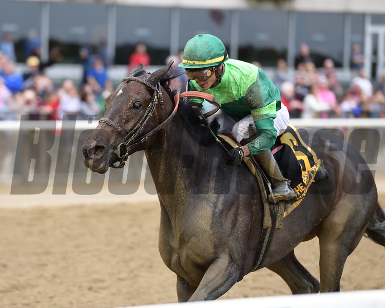 Wow Cat wins the 2018 Beldame Stakes<br /> Coglianese Photos/Joe Labozzetta