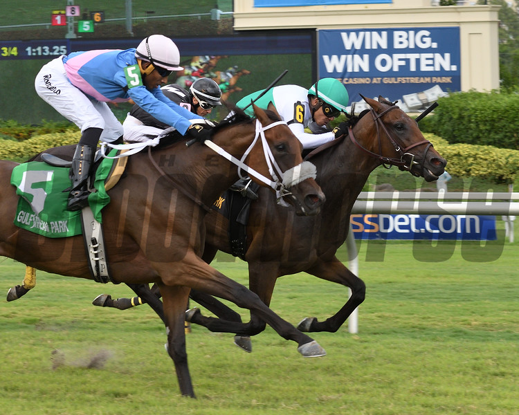 Entirely wins the 2018 Sharp Susan Stakes<br /> Coglianese Photos/Lauren King
