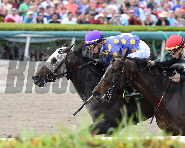 Garter and Tie wins the 2018 Smooth Air Stakes<br /> Coglianese Photos/Lauren King