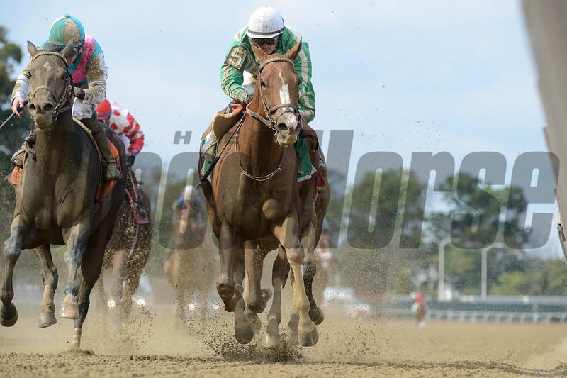 Highway Star, David Cohen, Iroquois Stakes, $150,000, Belmont Park, October 20, 2018<br /> Coglianese Photos