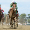 Highway Star, David Cohen, Iroquois Stakes, $150,000, Belmont Park, October 20, 2018<br /> Coglianese Photos