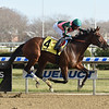 Positive Spirit wins the 2018 Demoiselle Stakes at Aqueduct<br /> Coglianese Photos/Elsa Lorieul