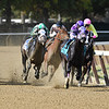 Runaway Lute wins the 2018 Hudson Handicap<br /> Coglianese Photos/Robert Mauhar