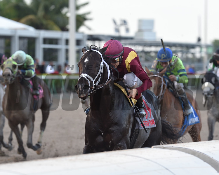 Coal Front wins the Mr. Prospector Stakes at Gulfstream Park Saturday, December 22, 2018. Photo: Coglianese Photos/Kenny Martin