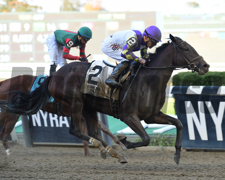 Surge of Pride wins the 2018 Maid of the Mist Stakes<br /> Coglianese Photos/Elsa Lorieul