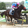 Come Dancing wins the 2018 Royal Delta Stakes<br /> Coglianese Photos/Susie Raisher