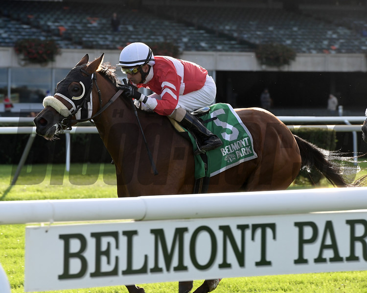 Fire Key wins the 2018 Floral Park Stakes at Belmont Park<br /> Coglianese Photos/Joe Labozzetta