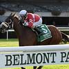 Fire Key wins the 2018 Floral Park Stakes at Belmont Park<br /> Coglianese Photos/Joe Labozzetta