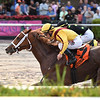 Dream Pauline wins the 2018 Sugar Swirl Stakes at Gulfstream Park<br /> Coglianese Photos/Lauren King