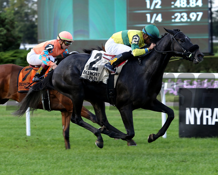 Forty Under wins the 2018 Pilgrim Stakes<br /> Coglianese Photos/Taylor Ejdys