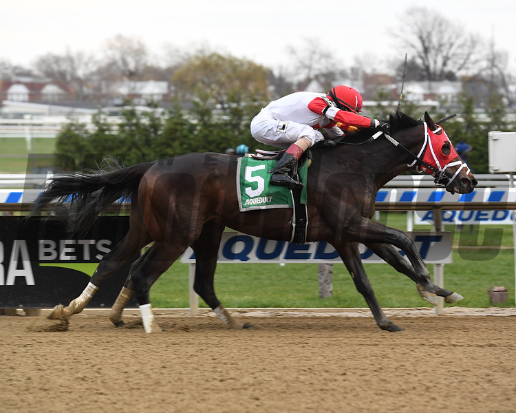 Village King (inside) wins the 2018 Red Smith Stakes<br /> Coglianese Photos