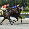 Jackson wins the 2018 Juvenile Sprint Stakes at Gulfstream Park West<br /> Coglianese Photos/Leslie Martin