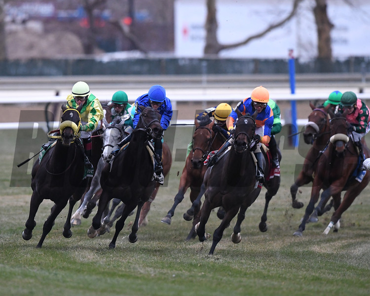 Lady Paname wins the 2018 Long Island Stakes (G3T) at Aqueduct<br /> Coglianese Photos/Robert Mauhar