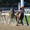 Imperial Hint wins the 2018 Vosburgh Stakes<br /> Coglianese Photos/Robert Mauhar