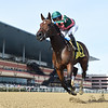 Positive Spirit wins the 2018 Demoiselle Stakes (G2) at Aqueduct<br /> Coglianese Photos