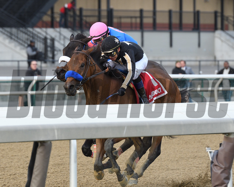 Marley's Freedom wins the 2018 Go for Wand (G3) at Aqueduct<br /> Coglianese Photos/Annette Jasko