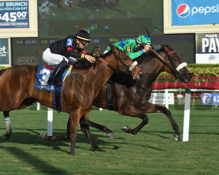 Si Que Es Buena wins the 2018 Via Borghese Stakes at Gulfstream Park<br /> Coglianese Photos/Leslie Martin
