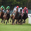 Fifty Five, Javier Castellano, Ticonderoga Stakes, $200,000, Belmont Park, October 20, 2018<br /> Coglianese Photos/Robert Mauhar