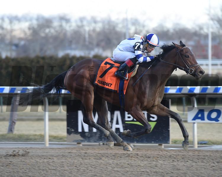 Espresso Shot wins the 2018 East View Stakes at Aqueduct.<br /> Coglianese Photos