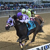 Runaway Lute wins the 2018 Hudson Stakes<br /> Coglianese Photos/Chelsea Durand