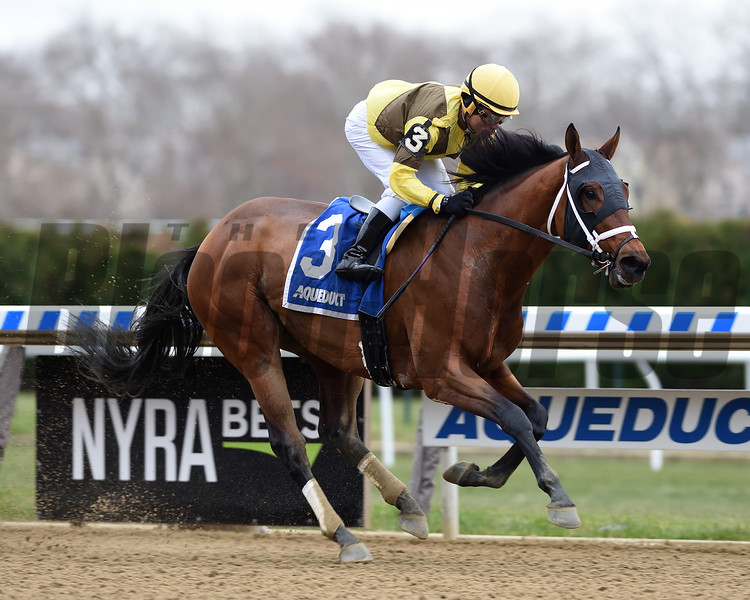Plainsman wins the 2018 Discovery Stakes at Aqueduct<br /> Coglianese Photos