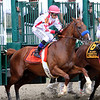 Collected Pa Derby Champion Stakes Parx Chad B. Harmon