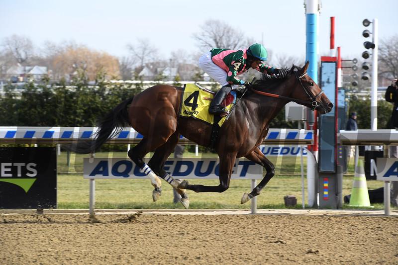 Positive Spirit wins the 2018 Demoiselle Stakes (G2) at Aqueduct<br /> Coglianese Photos/Susie Raisher